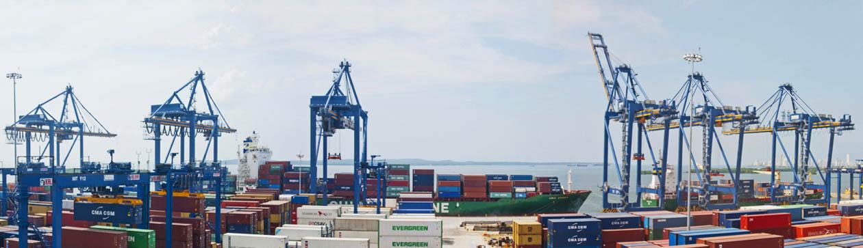 Procesos portuarios en las terminales