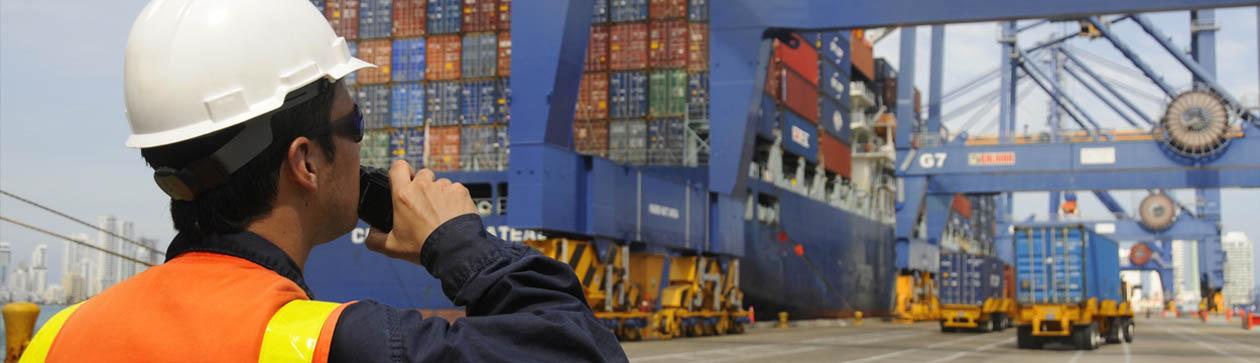 Servicios de operación portuaria y logística