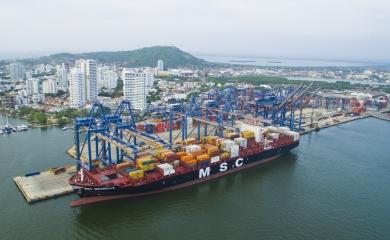 """El buque """"neopanamax"""" MSC Brunella tiene capacidad para 8.800 TEU"""
