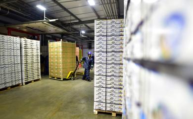 Colombia-reabre-exportación-de-mandarinas