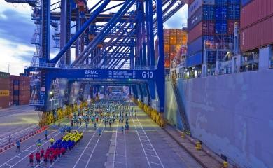 Media Martón del Mar desde el Puerto de Cartagena