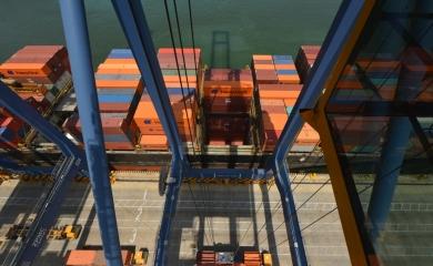 Nuevo récord de productividad Organización Puerto Cartagena