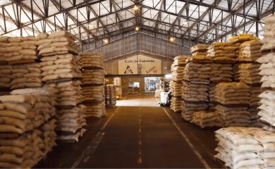 Sacos de café en las bodegas del grupo puerto de Cartagena