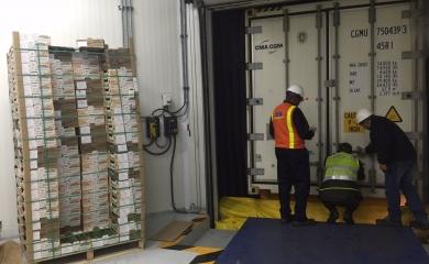 Como plataforma de servicios logísticos la Organización Puerto de Cartagena proyecta convertirse en el principal centro de conexiones para refrigerados del continente.  De hecho, como HUB que conecta con mercados frutícolas de países como Chile, Costa Rica, Brasil y Estados Unidos, Cartagena movilizó más de 100.000 TEU llenos en 2015.