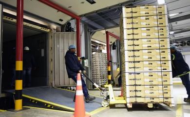 El traslado del tratamiento cuarentenario de Estados Unidos a Contecar trae menos costos logísticos para los exportadores colombianos