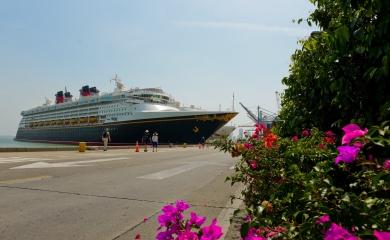 Con el arribo de los cruceros Regatta, Norwegian Dawn, Disney Wonder y Seven Seas Mariner se dio la última jornada de recaladas simultáneas en el puerto de Cartagena.