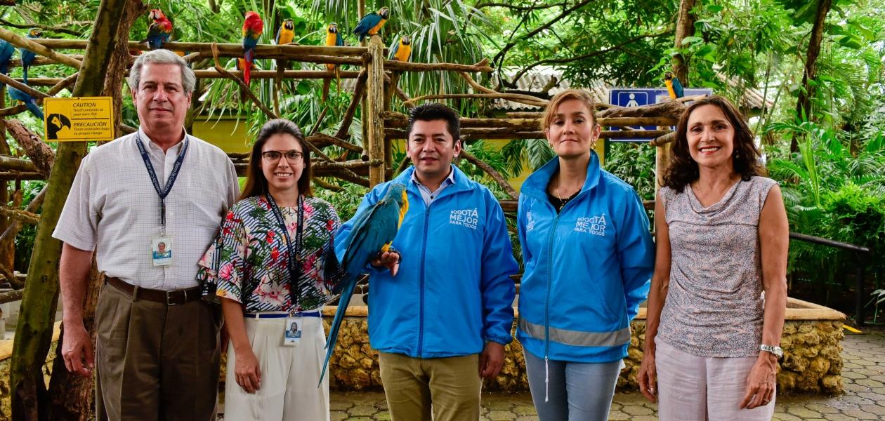 Para su cuidado y protección 30 animales fueron entregados a la Organización Puerto de Cartagena de manos de la Alcaldía de Bogotá, la cual, los había recuperado del tráfico ilegal.