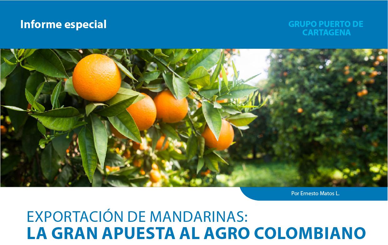 Exportacion-de-mandarinas